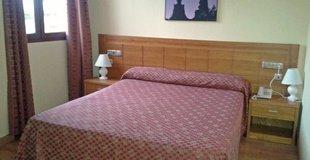SINGLE ROOM ATH Ribera del Duero Hotel